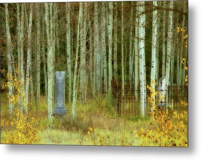 Metal Print featuring the photograph Alvarado Cemetery 41 by Marie Leslie