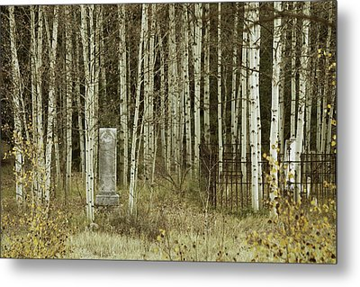 Metal Print featuring the photograph Alvarado Cemetery 42 by Marie Leslie