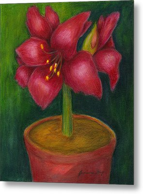 Metal Print featuring the painting Amaryllis by Jeanne Kay Juhos