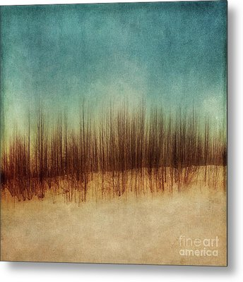 Amber And Blues Metal Print by Priska Wettstein