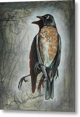 American Robin Metal Print by Sheri Howe