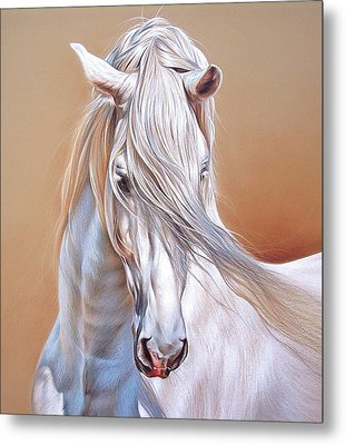 Andalusian - Detail Metal Print