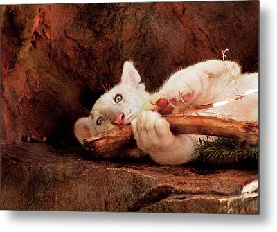 Animal - Cat - My Chew Toy Metal Print by Mike Savad