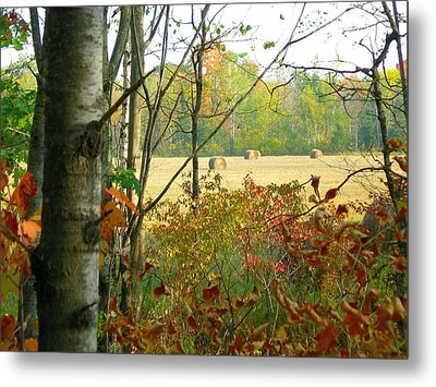 Another Bale Out Metal Print by Randy Rosenberger