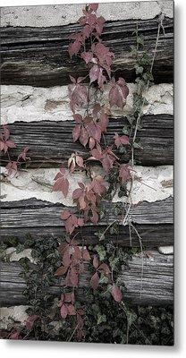 Appleberry Mountain 2 Metal Print