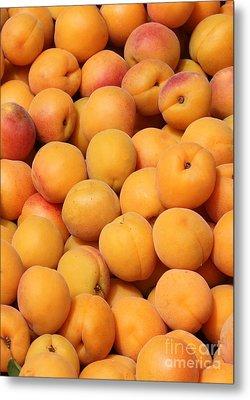 Apricots Metal Print by Carol Groenen