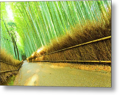 Arashiyama Bamboo Forest Road Grass Fence Tilted Metal Print