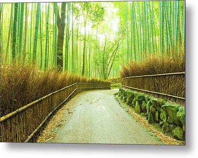 Arashiyama Bamboo Grove Morning Twisting Road H Metal Print