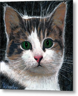 Are You Talking To Me Metal Print by Brent Ander