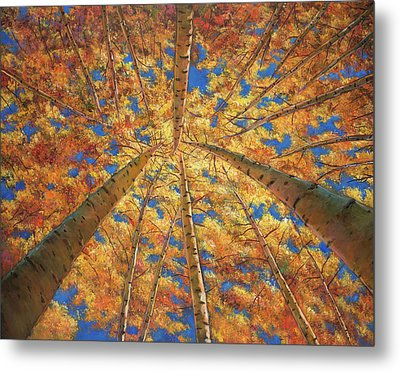 Ascension Metal Print by Johnathan Harris