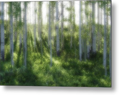 Metal Print featuring the photograph Aspen Morning 2 by Marie Leslie
