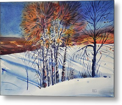Aspin In The Snow Metal Print by Donald Maier