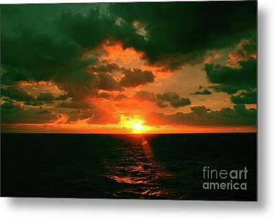 At The Edge Of Night Metal Print by Robyn King