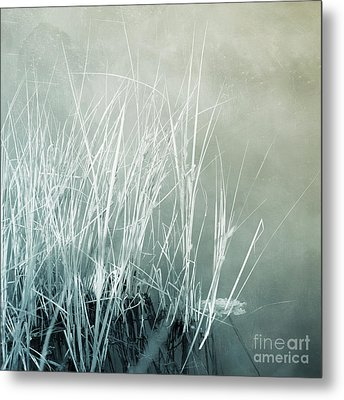 At The Lake 2 Metal Print by Priska Wettstein