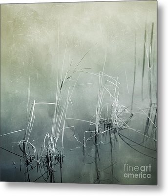 At The Lake 3 Metal Print by Priska Wettstein