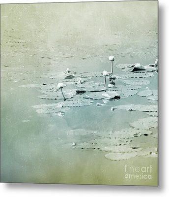 At The Lake 4 Metal Print by Priska Wettstein