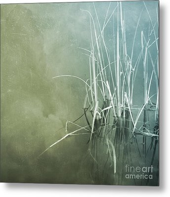 At The Lake 5 Metal Print by Priska Wettstein