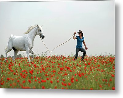 At The Poppies' Field... 2 Metal Print by Dubi Roman