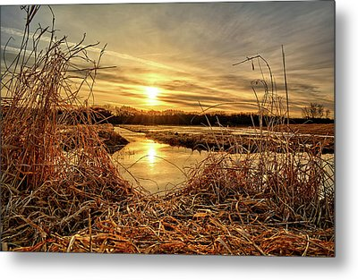 At The Rivers Edge Metal Print by Bonfire Photography