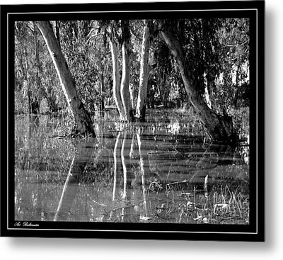 Metal Print featuring the photograph At The Swamp 2 by Arik Baltinester