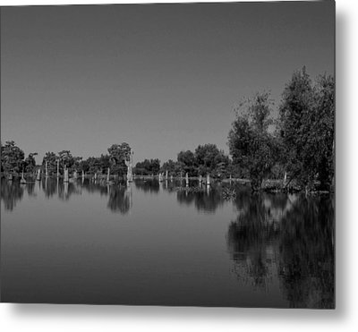 Atchafalaya Basin 15 Metal Print by Maggy Marsh
