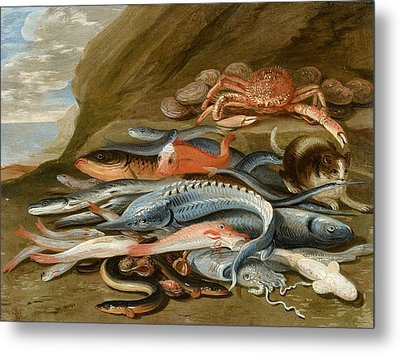 attributed to Still Life with Fish Metal Print by Jan van Kessel