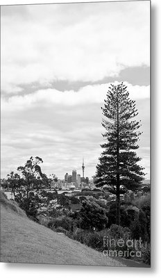 Auckland City New Zealand Metal Print
