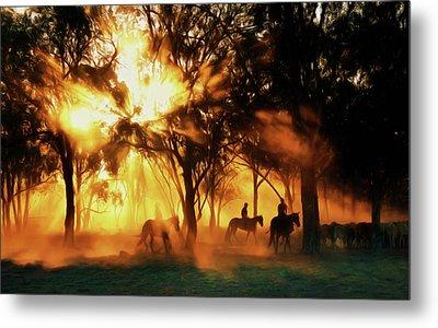 Australian Morning At Sunrise Metal Print by Georgiana Romanovna