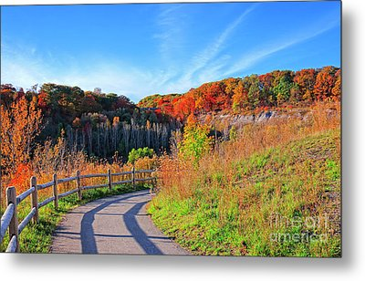 Metal Print featuring the photograph Autumn Hiking Trail by Charline Xia