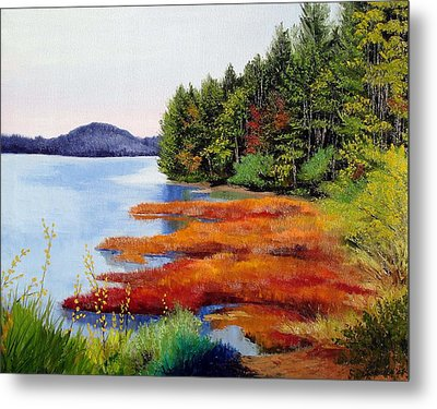 Autumn Bay Marsh Metal Print by Laura Tasheiko