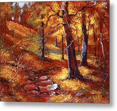 Autumn Color Palette Metal Print by David Lloyd Glover