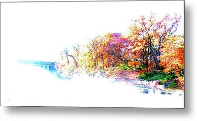 Autumn Colors Metal Print by Hannes Cmarits