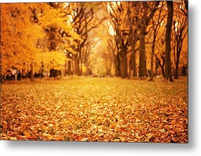 Autumn Foliage - Central Park - New York City Metal Print by Vivienne Gucwa