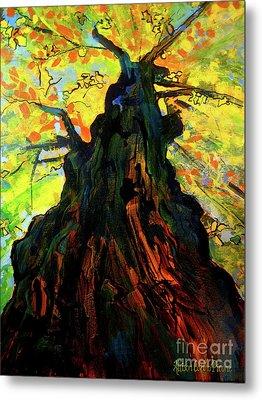 Autumn Glow Metal Print by Allison Coelho Picone