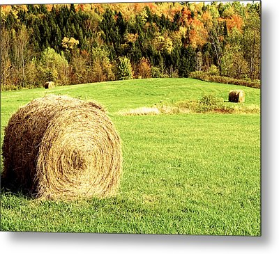 Autumn Hay Bales  Metal Print