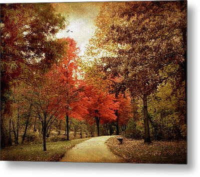 Autumn Maples Metal Print by Jessica Jenney