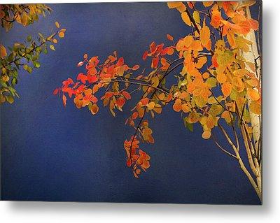 Autumn Matinee Metal Print by Theresa Tahara