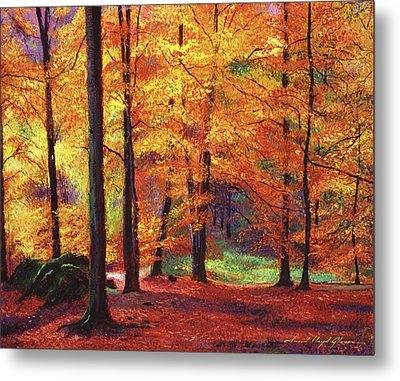 Autumn Serenity Metal Print by David Lloyd Glover