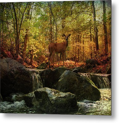 Metal Print featuring the digital art Autumn Splendor by Kathleen Holley