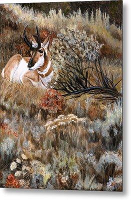 Autumn Splendor Metal Print by Sheri Gordon