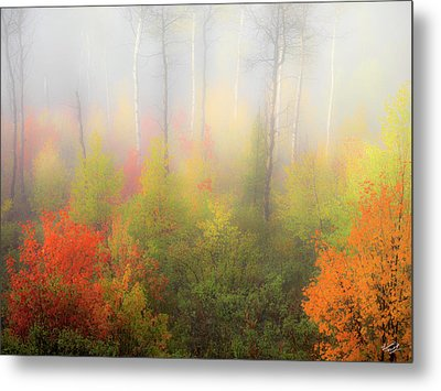 Autumn Stillness 2 Metal Print