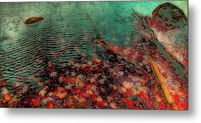 Autumn Submerged Metal Print by David Patterson