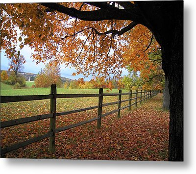 Metal Print featuring the photograph Autumn Vista by Don Struke