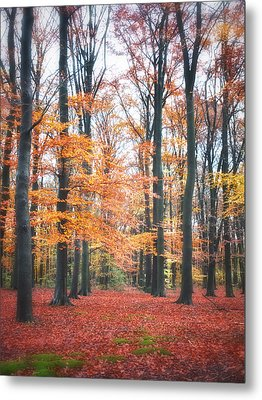 Autumn Whispers I Metal Print by Artecco Fine Art Photography