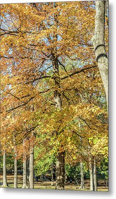 Autumn Metal Print by William Morris