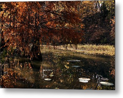 Metal Print featuring the photograph Autumnal Solace At Lake Murray by Tamyra Ayles