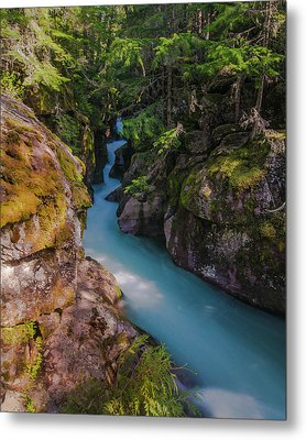 Metal Print featuring the photograph Avalanche Gorge 5 by Gary Lengyel