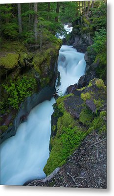 Metal Print featuring the photograph Avalanche Gorge 6 by Gary Lengyel