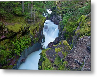 Metal Print featuring the photograph Avalanche Gorge 7 by Gary Lengyel