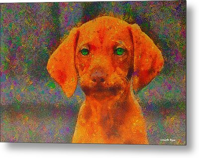 Baby Dog - Pa Metal Print by Leonardo Digenio